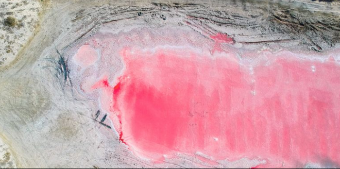 Discovery of pink water lake in UAE