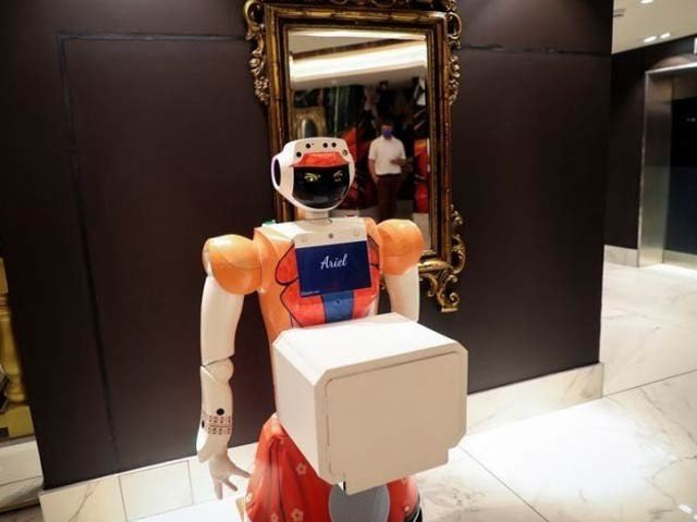 Robot hosts a hotel in South Africa