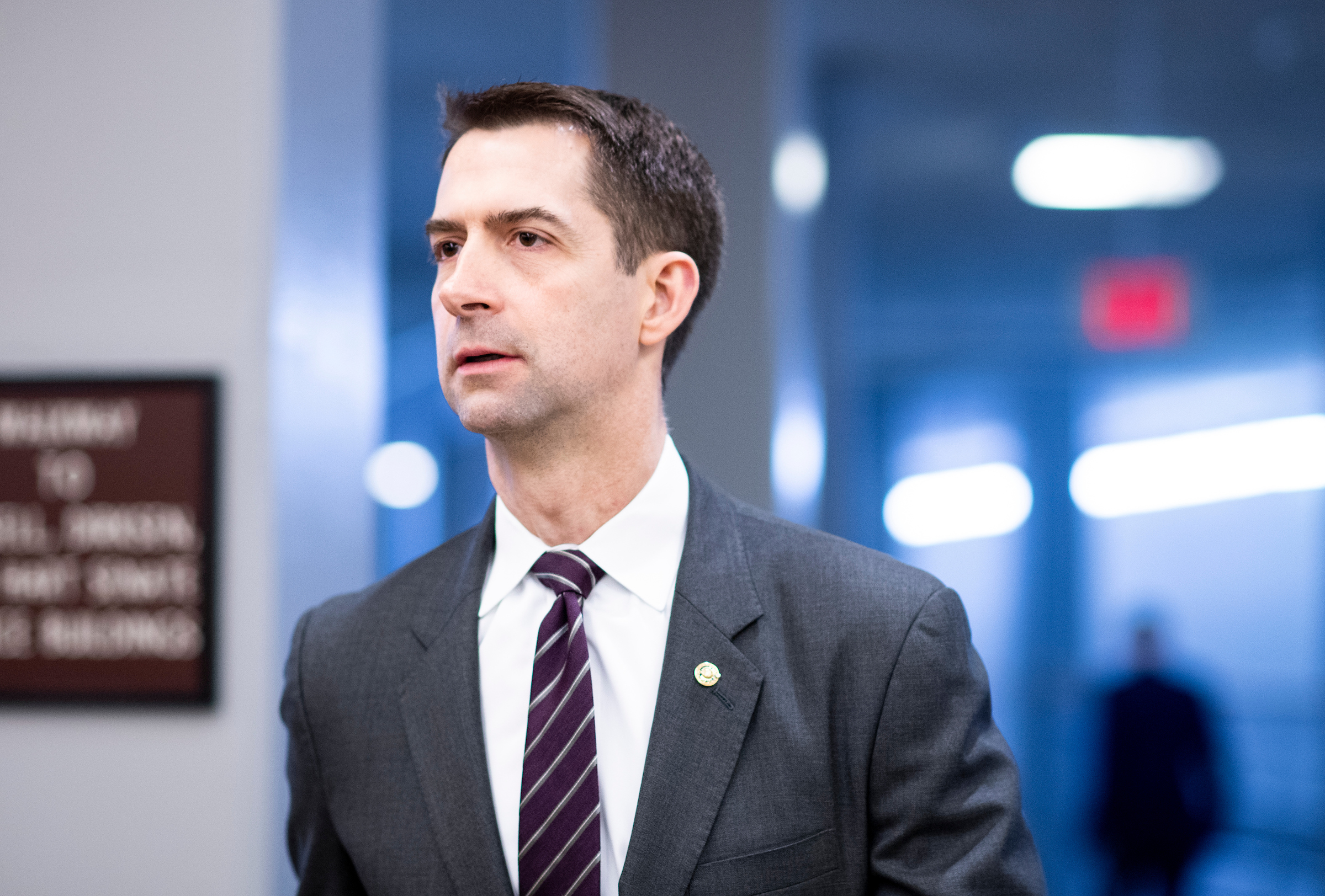 Tom Cotton recounts 'heartbreaking scenes' at the southern border