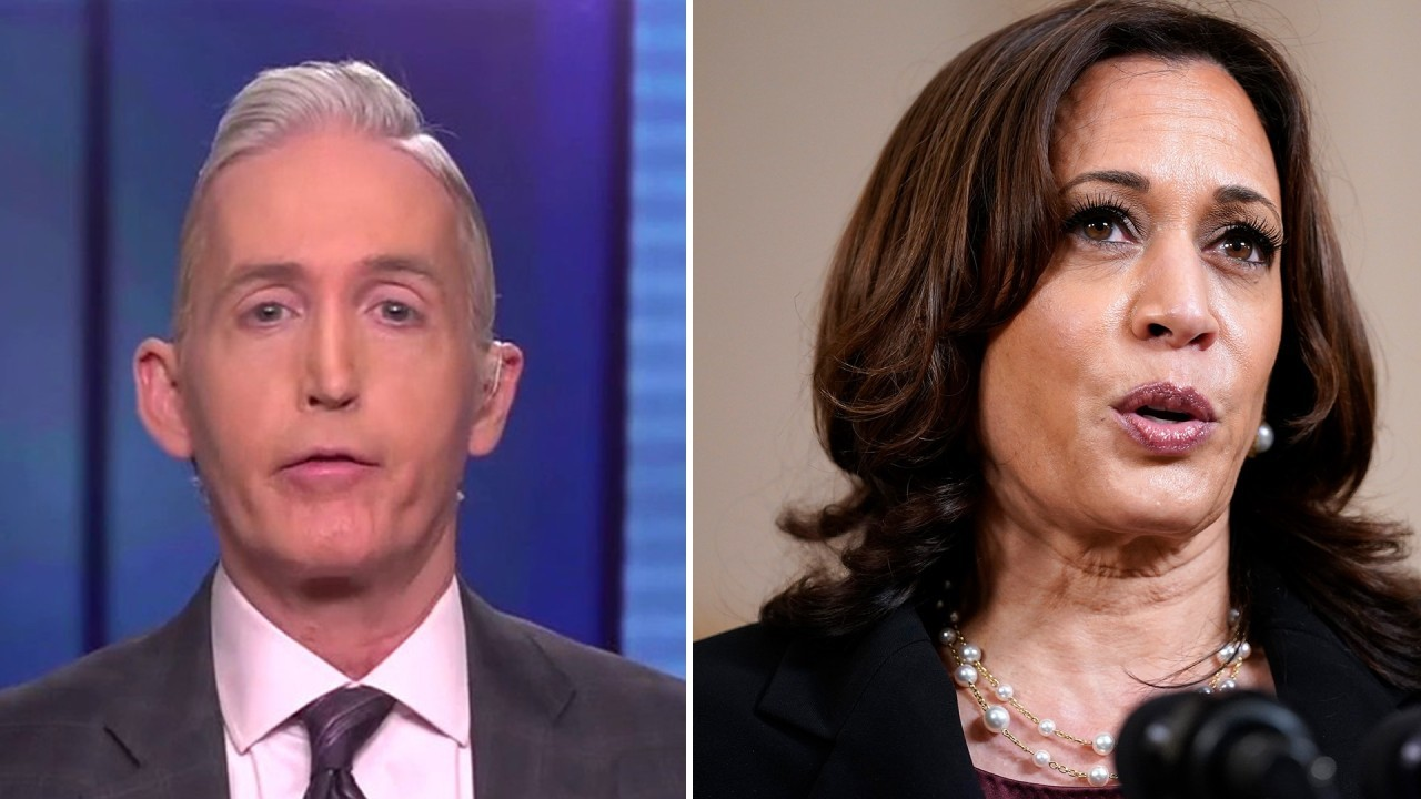 Gowdy: Kamala Harris put her political ambitions ahead of police reform