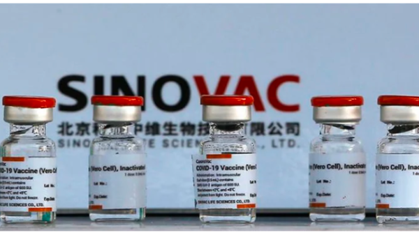 Another country has approved the use of the Synovik vaccine