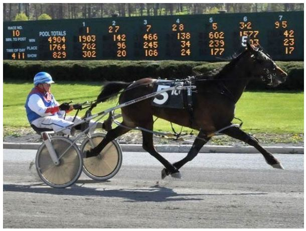 Virginia: The 86-year-old athlete has set a new record in the annual horse carriage race held in the United States.